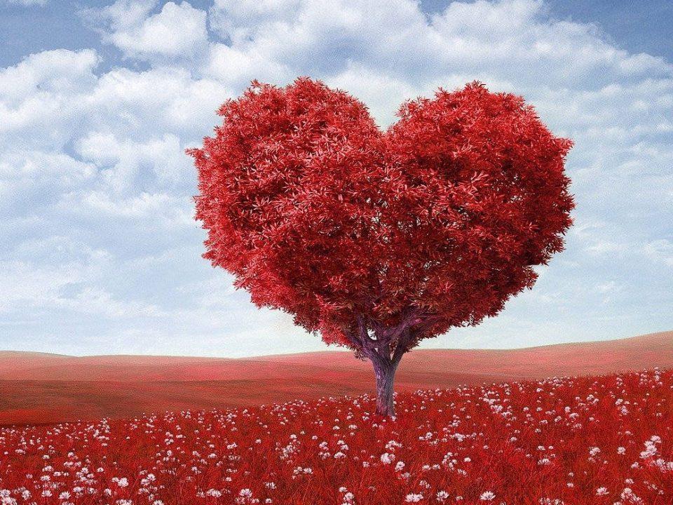 Die Erfahrung der Liebe verbindet uns alle